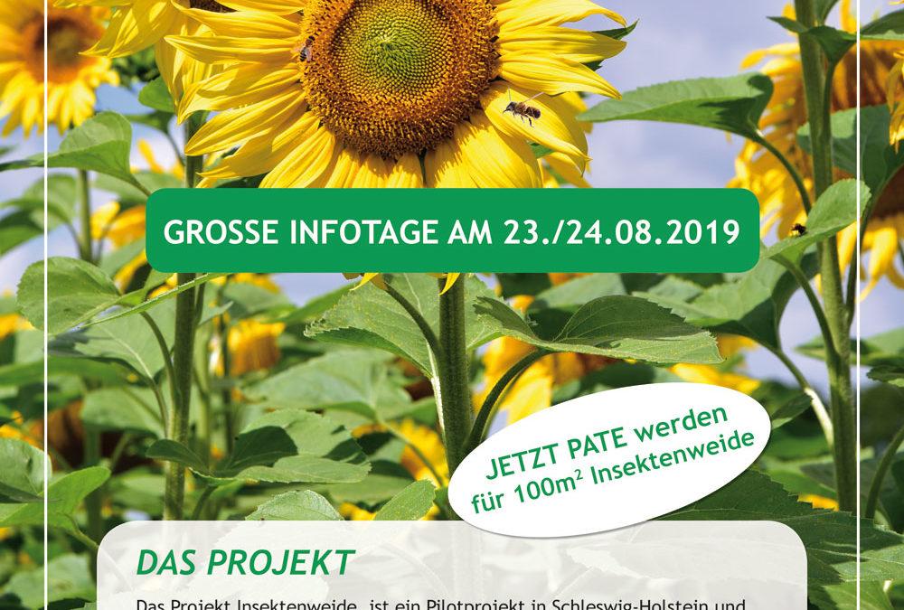 Projekt Insektenweide – Ein Nachhaltigkeits- und Biodiversitätsprojekt