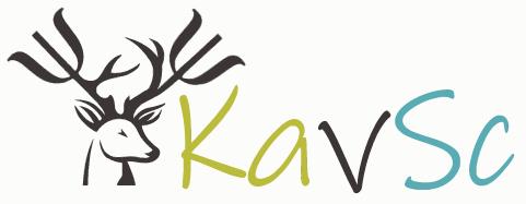 logo-kavsc